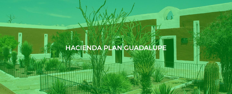 hacienda banner